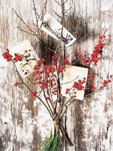 Christmas branch card holder