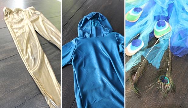 JanetNew_Costume_Details