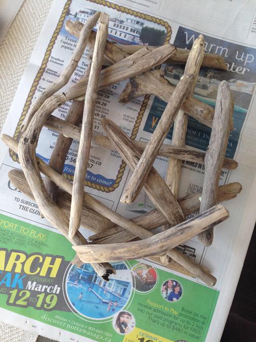 driftwood birdnest 5